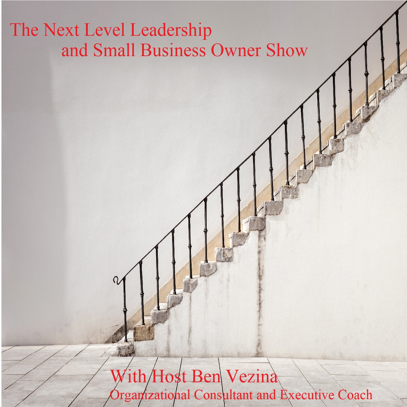 The Next Level Leadership and Entrepreneur Show